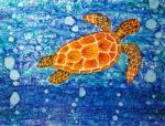 image turtle